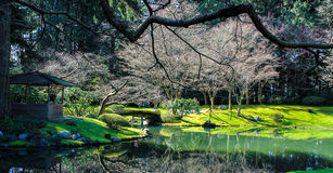 Jardines japoneses Fotografía de archivo libre de regalías