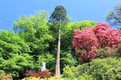 Jardines majestuosos. Fotografía de archivo