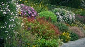 Jardines públicos en la floración almacen de metraje de vídeo