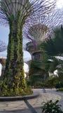 Jardines por la bahía Fotografía de archivo libre de regalías