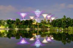 Jardines por la bahía en Singapur Foto de archivo libre de regalías