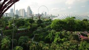Jardines por la bahía Singapur metrajes