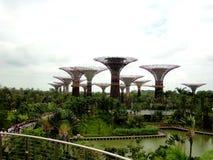 Jardines por la bahía, Singapur Imagen de archivo