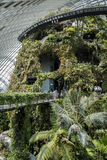 Jardines por la bahía Singapur Fotografía de archivo libre de regalías