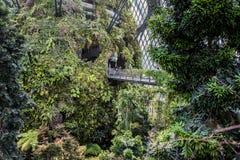 Jardines por la bahía Singapur Imagenes de archivo