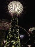 Jardines por la bahía, Singapur Imágenes de archivo libres de regalías