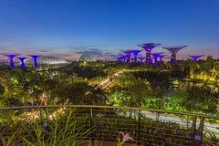 Jardines por la bahía, Singapur Fotografía de archivo libre de regalías
