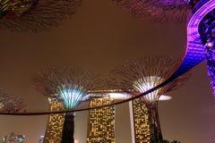 Jardines por la bahía Singapur Imagen de archivo