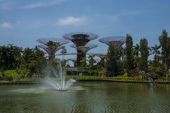 Jardines por la bahía Singapur con supertrees Foto de archivo libre de regalías