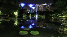 Jardines por la noche de la bahía almacen de video
