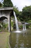 Jardines tropicales de conexión en cascada de Madeira de las cascadas y de las fuentes Fotografía de archivo libre de regalías