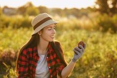 Jardinière de femme avec des pommes de terre Image stock