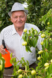 Jardinier à l'aide d'un pulvérisateur images libres de droits