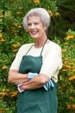 Jardinier aîné Images stock