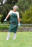 Jardinier aîné Photo libre de droits