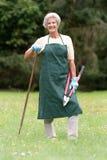 Jardinier aîné Photo stock
