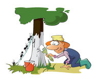 jardinier Image libre de droits
