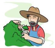 jardinier Photo stock