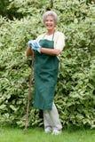 Jardinier aîné photos stock