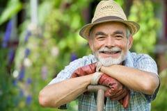 Jardinier aîné avec une cosse Photographie stock libre de droits