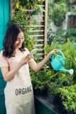 Jardinier asiatique de femme arrosant les fleurs dans son jardin dans le summe Image stock