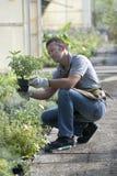 Jardinier au travail Image stock