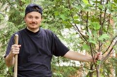 Jardinier avec l'arbre neuf photographie stock libre de droits