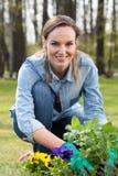Jardinier avec la menthe photographie stock libre de droits
