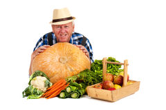 Jardinier avec la moisson photo stock