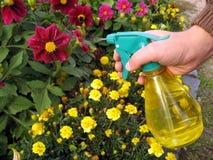 Jardinier avec le pulvérisateur photos stock