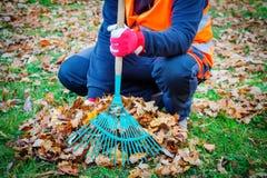 Jardinier avec le râteau aux feuilles d'automne image libre de droits