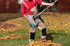 Jardinier ayant l'amusement pendant le temps d'automne Photos stock