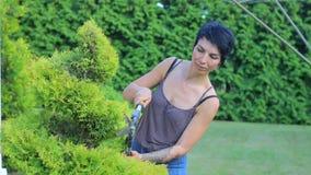 Jardinier dans les mains du jardinier, coupant le buisson banque de vidéos