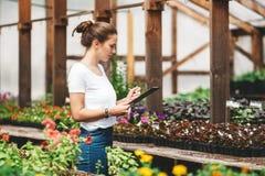 Jardinier de femme professionnelle travaillant en serre chaude photo libre de droits