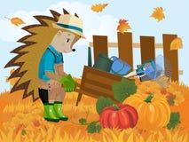 Jardinier de hérisson illustration stock