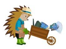 Jardinier de hérisson avec un chariot en bois Illustration de vecteur illustration libre de droits