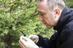 Jardinier de Moyen Âge travaillant dans le jardin de forêt Photo stock