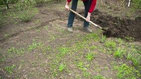 Jardinier Digs de jeune homme la terre avec une pelle dans le jardin Laps de temps clips vidéos