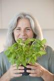 Jardinier en serre chaude Images stock