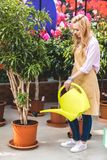 Jardinier féminin arrosant les plantes vertes images libres de droits