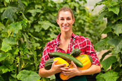 Jardinier féminin dans le jardin ou la pépinière du marché Photos libres de droits