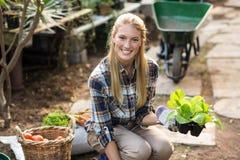 jardinier féminin heureux tenant le jeune arbre Image libre de droits