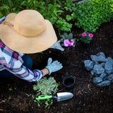 Jardinier féminin méconnaissable plantant des fleurs dans son jardin Jardinage Vue supplémentaire image libre de droits