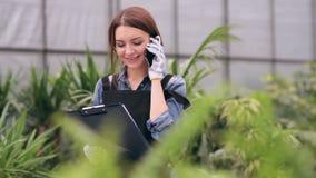 Jardinier féminin parlant au téléphone en serre chaude banque de vidéos