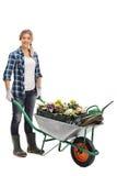 Jardinier féminin poussant une brouette photographie stock