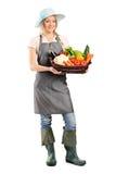 Jardinier féminin retenant un panier des légumes photo libre de droits