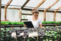 Jardinier f?minin travaillant dans le jardin avec des fleurs photographie stock libre de droits