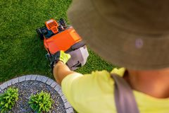 Jardinier Lawn Mowing images stock