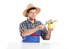 Jardinier mâle contrôlant un bac de fleur Images stock