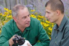Jardinier mûr montrant le produit de jet au stagiaire images libres de droits